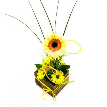 Композиция одного цветка