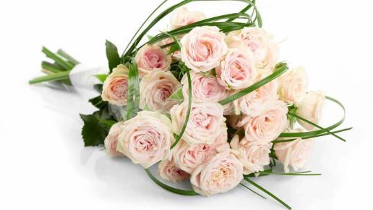 Букет из кустовых роз 9 шт, берграсса