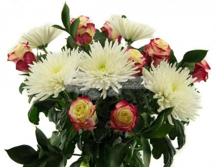 Букет с крупноголовой Хризантемой и Розами